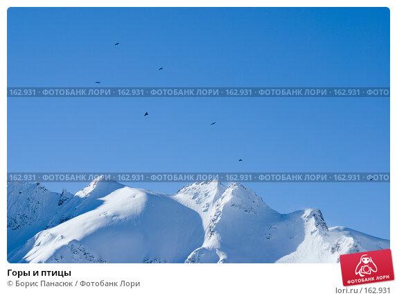 Горы и птицы, фото № 162931, снято 15 декабря 2007 г. (c) Борис Панасюк / Фотобанк Лори