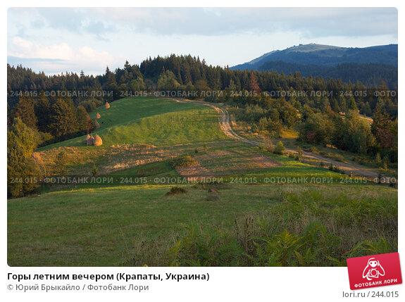 Горы летним вечером (Крапаты, Украина), фото № 244015, снято 2 сентября 2007 г. (c) Юрий Брыкайло / Фотобанк Лори