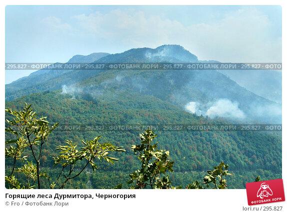 Горящие леса Дурмитора, Черногория, фото № 295827, снято 28 августа 2007 г. (c) Fro / Фотобанк Лори