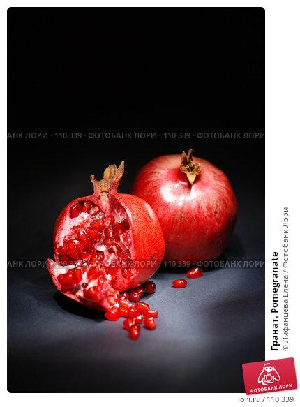 Гранат. Pomegranate, фото № 110339, снято 4 ноября 2007 г. (c) Лифанцева Елена / Фотобанк Лори