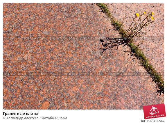 Купить «Гранитные плиты», эксклюзивное фото № 314567, снято 7 июня 2008 г. (c) Александр Алексеев / Фотобанк Лори