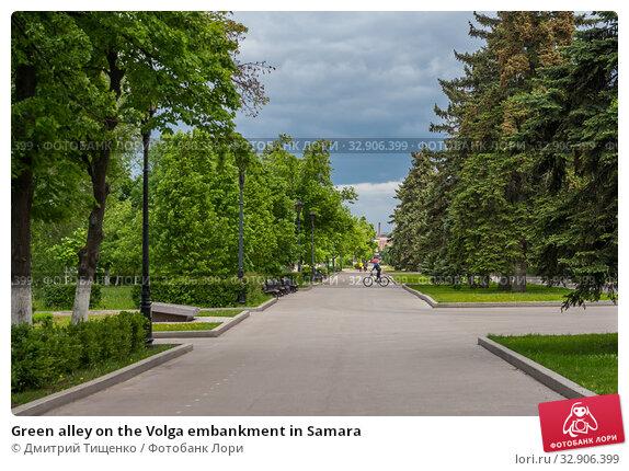 Green alley on the Volga embankment in Samara (2019 год). Стоковое фото, фотограф Дмитрий Тищенко / Фотобанк Лори