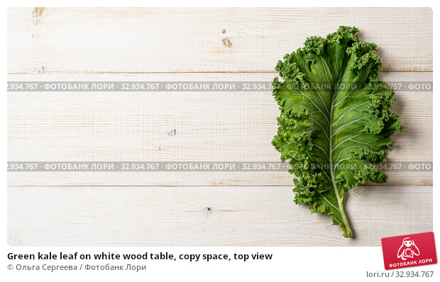 Купить «Green kale leaf on white wood table, copy space, top view», фото № 32934767, снято 2 августа 2019 г. (c) Ольга Сергеева / Фотобанк Лори