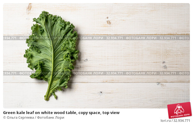 Купить «Green kale leaf on white wood table, copy space, top view», фото № 32934771, снято 2 августа 2019 г. (c) Ольга Сергеева / Фотобанк Лори