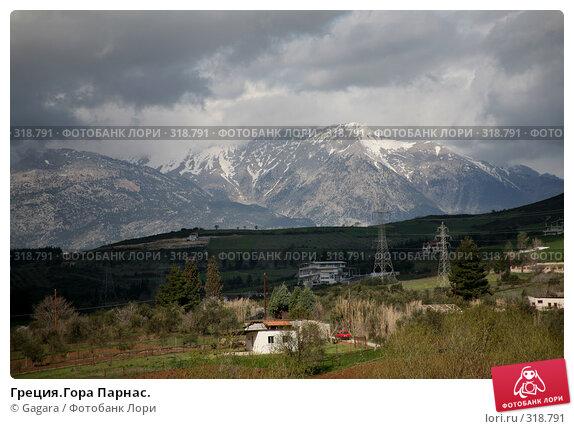 Греция.Гора Парнас., фото № 318791, снято 9 марта 2008 г. (c) Gagara / Фотобанк Лори
