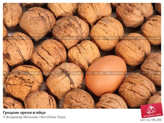 Грецкие орехи и яйцо, фото № 98295, снято 11 октября 2007 г. (c) Владимир Мельник / Фотобанк Лори