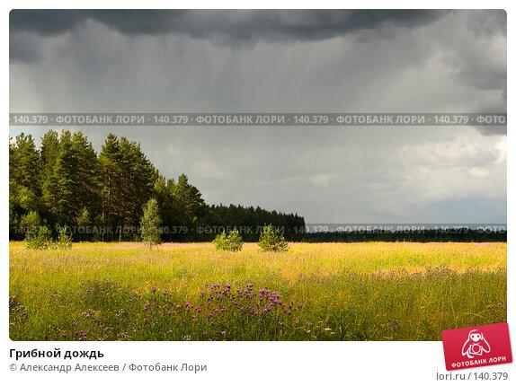 Грибной дождь, эксклюзивное фото № 140379, снято 19 июля 2006 г. (c) Александр Алексеев / Фотобанк Лори