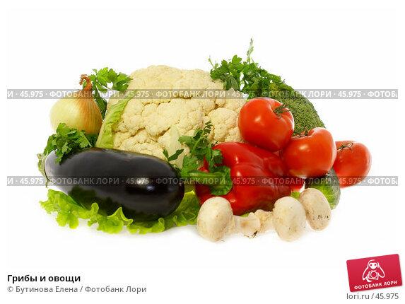 Грибы и овощи, фото № 45975, снято 22 мая 2007 г. (c) Бутинова Елена / Фотобанк Лори
