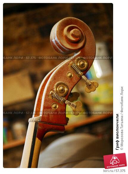 Гриф виолончели, фото № 57375, снято 13 декабря 2005 г. (c) Морозова Татьяна / Фотобанк Лори