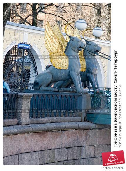 Грифоны на Банковском мосту. Санкт-Петербург, эксклюзивное фото № 36991, снято 9 апреля 2006 г. (c) Ирина Терентьева / Фотобанк Лори