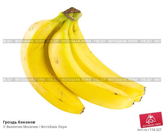 Гроздь бананов, фото № 118327, снято 14 октября 2007 г. (c) Валентин Мосичев / Фотобанк Лори