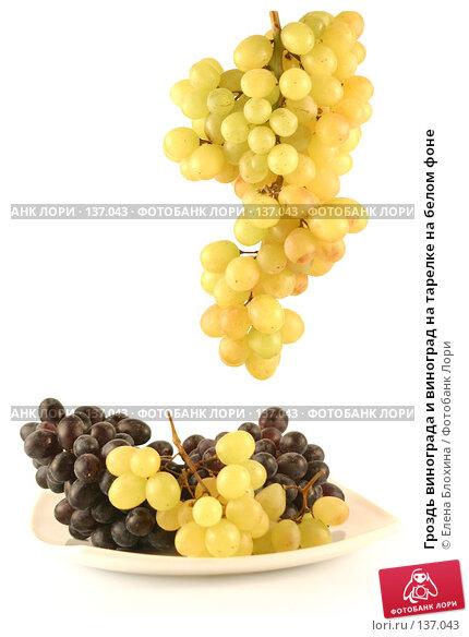 Купить «Гроздь винограда и виноград на тарелке на белом фоне», фото № 137043, снято 25 августа 2007 г. (c) Елена Блохина / Фотобанк Лори