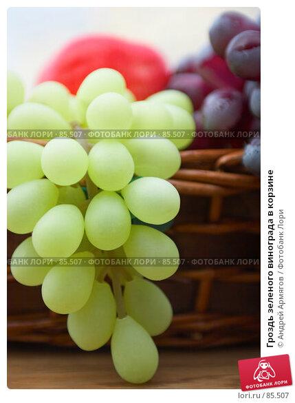 Гроздь зеленого винограда в корзине, фото № 85507, снято 28 октября 2006 г. (c) Андрей Армягов / Фотобанк Лори