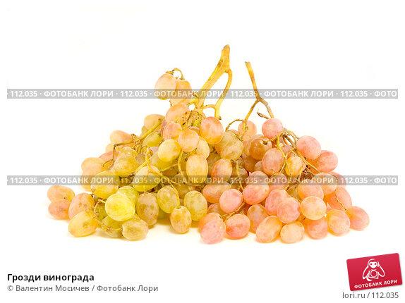 Грозди винограда, фото № 112035, снято 2 декабря 2006 г. (c) Валентин Мосичев / Фотобанк Лори