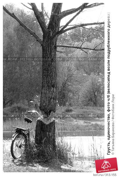 Грусть, одиночество, фото ч/б (велосипед возле подрубленного дерева), фото № 313155, снято 14 мая 2008 г. (c) Татьяна Баранова / Фотобанк Лори