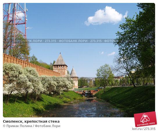 Г.Смоленск, крепостная стена, фото № 273315, снято 5 мая 2008 г. (c) Примак Полина / Фотобанк Лори