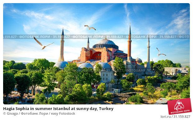 Купить «Hagia Sophia in summer Istanbul at sunny day, Turkey», фото № 31159827, снято 13 июня 2017 г. (c) easy Fotostock / Фотобанк Лори