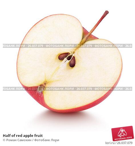 Купить «Half of red apple fruit», фото № 26037079, снято 14 февраля 2017 г. (c) Роман Самохин / Фотобанк Лори