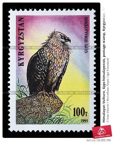 Himalayan Vulture, Gyps himalayensis, postage stamp, Kyrgyzstan, 1995. (2010 год). Редакционное фото, фотограф Ivan Vdovin / age Fotostock / Фотобанк Лори