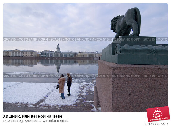 Хищник, или Весной на Неве, эксклюзивное фото № 207515, снято 20 февраля 2008 г. (c) Александр Алексеев / Фотобанк Лори