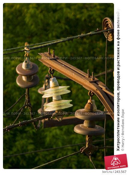 Хитросплетение изоляторов, проводов и растяжек на фоне зеленой растительности, фото № 243567, снято 2 июня 2007 г. (c) Harry / Фотобанк Лори