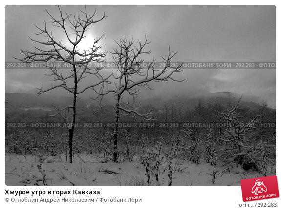 Хмурое утро в горах Кавказа, фото № 292283, снято 24 декабря 2005 г. (c) Оглоблин Андрей Николаевич / Фотобанк Лори
