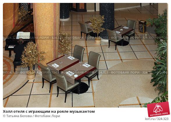 Холл отеля с играющим на рояле музыкантом, фото № 324323, снято 11 июня 2008 г. (c) Татьяна Белова / Фотобанк Лори