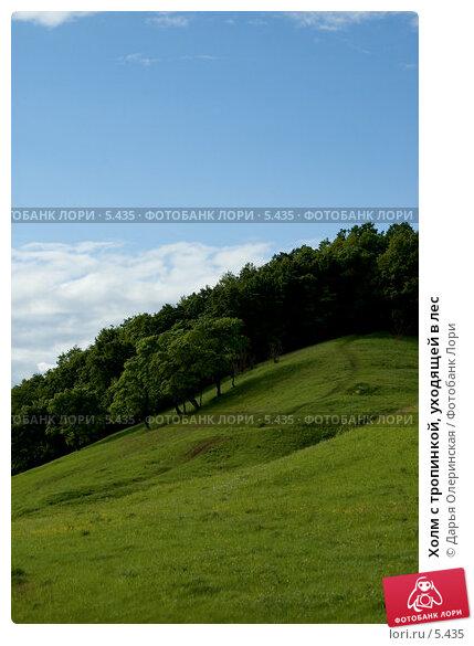 Холм с тропинкой, уходящей в лес, фото № 5435, снято 11 июня 2006 г. (c) Дарья Олеринская / Фотобанк Лори
