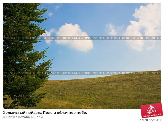 Холмистый пейзаж. Поле и облачное небо., фото № 228311, снято 19 августа 2007 г. (c) Harry / Фотобанк Лори