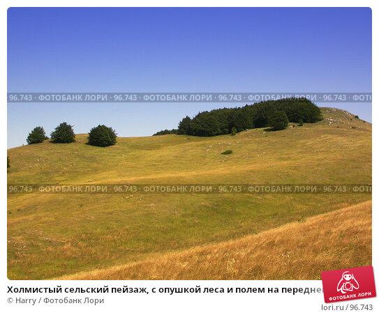 Купить «Холмистый сельский пейзаж, с опушкой леса и полем на переднем плане», фото № 96743, снято 24 августа 2007 г. (c) Harry / Фотобанк Лори
