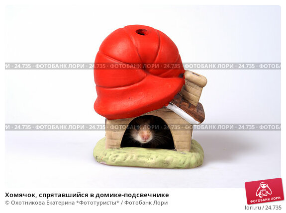 Хомячок, спрятавшийся в домике-подсвечнике, эксклюзивное фото № 24735, снято 18 марта 2007 г. (c) Охотникова Екатерина *Фототуристы* / Фотобанк Лори