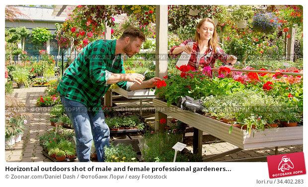 Horizontal outdoors shot of male and female professional gardeners... Стоковое фото, фотограф Zoonar.com/Daniel Dash / easy Fotostock / Фотобанк Лори
