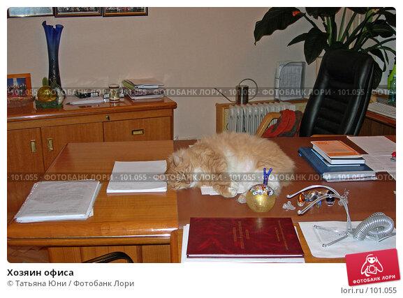 Хозяин офиса, эксклюзивное фото № 101055, снято 11 декабря 2006 г. (c) Татьяна Юни / Фотобанк Лори