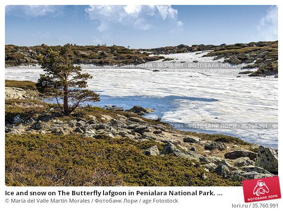 Ice and snow on The Butterfly lafgoon in Penialara National Park. ... Стоковое фото, фотограф María del Valle Martín Morales / age Fotostock / Фотобанк Лори