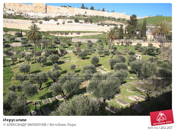 Иерусалим, фото № 262207, снято 22 февраля 2008 г. (c) АЛЕКСАНДР МИХЕИЧЕВ / Фотобанк Лори