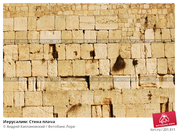 Иерусалим: Стена плача, фото № 201811, снято 30 декабря 2007 г. (c) Андрей Каплановский / Фотобанк Лори
