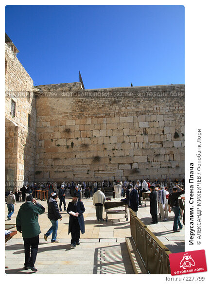 Иерусалим. Стена Плача, фото № 227799, снято 22 февраля 2008 г. (c) АЛЕКСАНДР МИХЕИЧЕВ / Фотобанк Лори