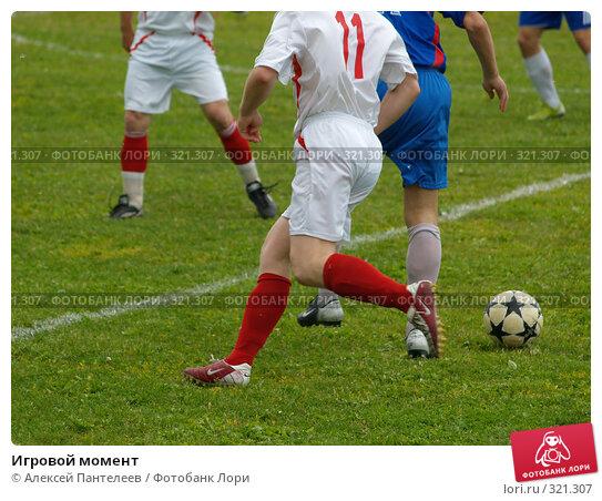 Купить «Игровой момент», фото № 321307, снято 12 июня 2008 г. (c) Алексей Пантелеев / Фотобанк Лори
