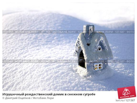 Купить «Игрушечный рождественский домик в снежном сугробе», фото № 127587, снято 27 ноября 2006 г. (c) Дмитрий Ощепков / Фотобанк Лори