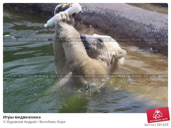 Игры медвежонка, эксклюзивное фото № 331615, снято 18 июня 2008 г. (c) Журавлев Андрей / Фотобанк Лори