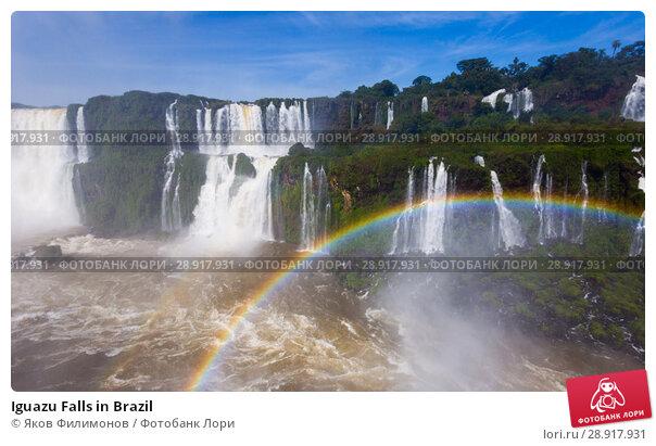 Купить «Iguazu Falls in Brazil», фото № 28917931, снято 17 февраля 2017 г. (c) Яков Филимонов / Фотобанк Лори