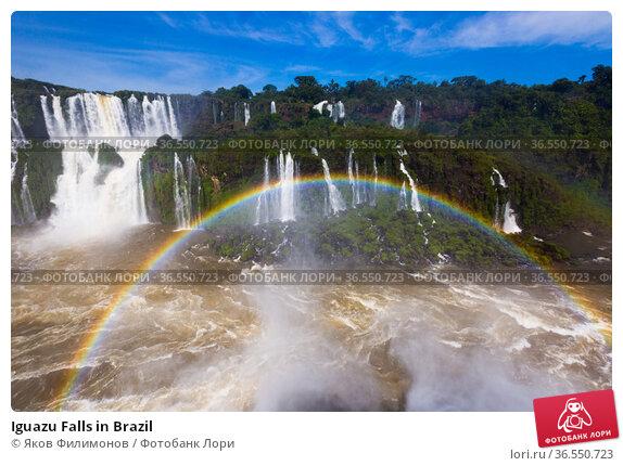 Iguazu Falls in Brazil. Стоковое фото, фотограф Яков Филимонов / Фотобанк Лори