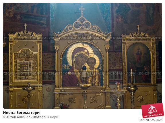 Купить «Икона Богоматери», фото № 250623, снято 6 февраля 2008 г. (c) Антон Алябьев / Фотобанк Лори
