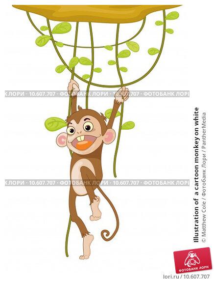 Illustration of  a cartoon monkey on white. Стоковая иллюстрация, иллюстратор Matthew Cole / PantherMedia / Фотобанк Лори