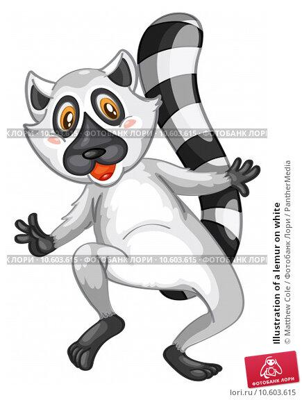 Illustration of a lemur on white. Стоковая иллюстрация, иллюстратор Matthew Cole / PantherMedia / Фотобанк Лори