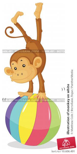 illustration of monkey on white. Стоковая иллюстрация, иллюстратор Matthew Cole / PantherMedia / Фотобанк Лори