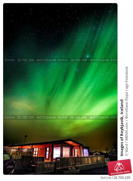 Купить «Images of Reykjavik, Iceland Featuring: Northern Lights, Iceland Where: Reykyavik, Iceland When: 26 Oct 2016 Credit: Ward/WENN.com», фото № 28700299, снято 26 октября 2016 г. (c) age Fotostock / Фотобанк Лори