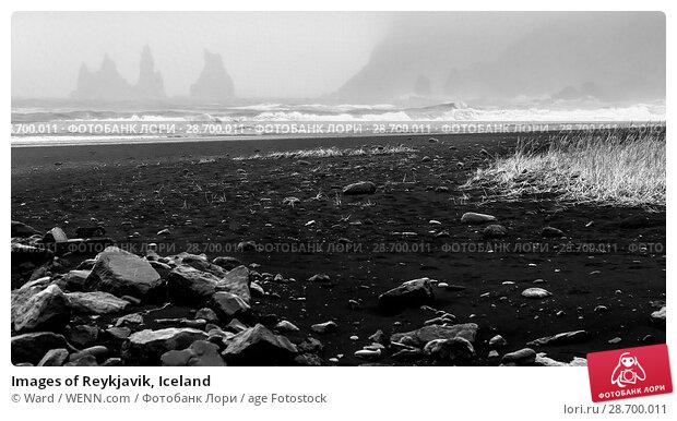 Купить «Images of Reykjavik, Iceland Featuring: Vik, Iceland Where: Reykyavik, Iceland When: 26 Oct 2016 Credit: Ward/WENN.com», фото № 28700011, снято 26 октября 2016 г. (c) age Fotostock / Фотобанк Лори