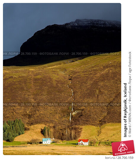 Купить «Images of Reykjavik, Iceland Featuring: Waterfall, Iceland Where: Reykyavik, Iceland When: 26 Oct 2016 Credit: Ward/WENN.com», фото № 28700159, снято 26 октября 2016 г. (c) age Fotostock / Фотобанк Лори