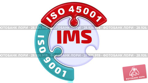 Купить «IMS. ISO Integrated Management System. The check mark in the form of a puzzle», видеоролик № 28926919, снято 9 августа 2018 г. (c) WalDeMarus / Фотобанк Лори